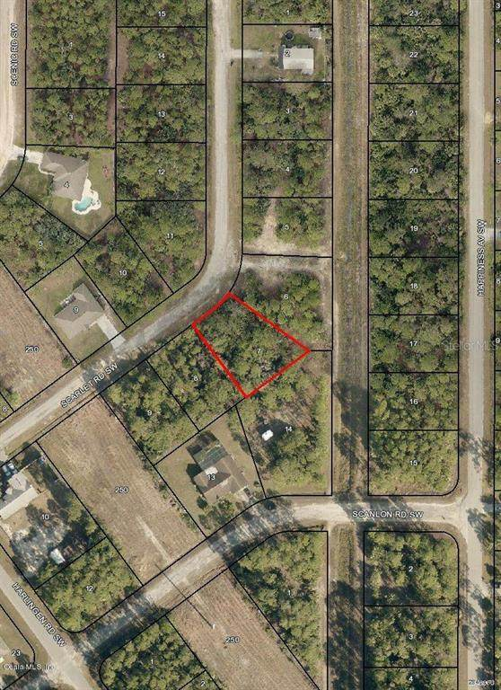 428 SW Scarlet Road, Palm Bay, FL 32908 (MLS #OM544743) :: Pepine Realty