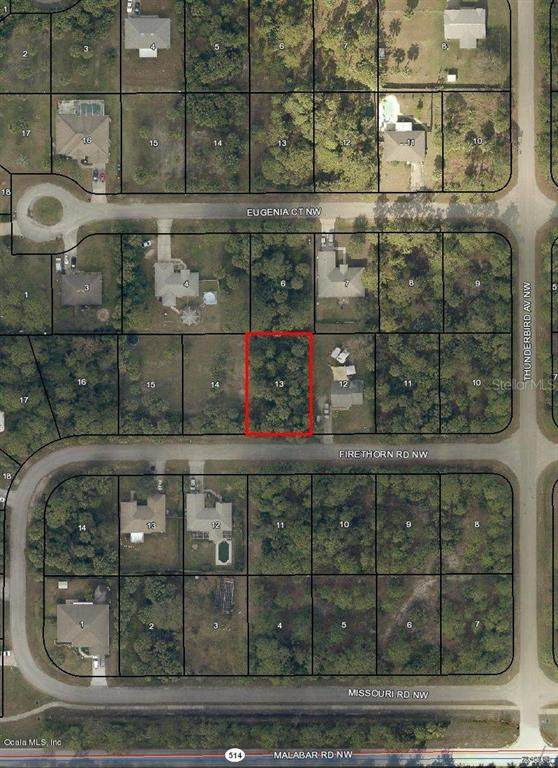 1851 NW Firethorn Road, Palm Bay, FL 32907 (MLS #OM544746) :: The Lersch Group
