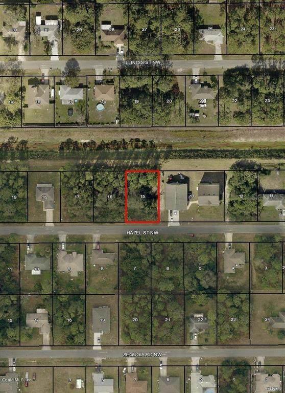 1357 NW Hazel Street, Palm Bay, FL 32907 (MLS #OM544747) :: Griffin Group