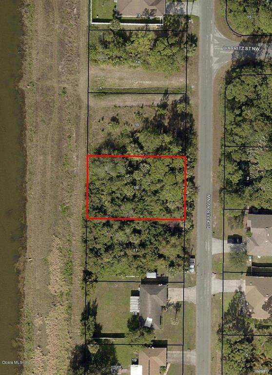 182 NW Hoffer Avenue, Palm Bay, FL 32907 (MLS #OM544748) :: Bob Paulson with Vylla Home