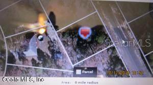8244 N Ibsen Drive, Citrus Springs, FL 34434 (MLS #OM545584) :: Homepride Realty Services