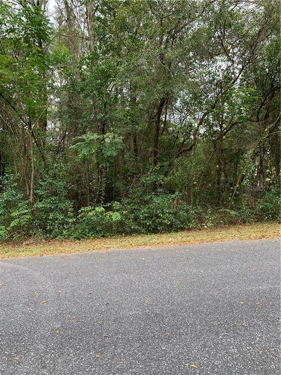LOT 6 SE Se 107Th Place Place, Belleview, FL 34420 (MLS #OM558617) :: The A Team of Charles Rutenberg Realty