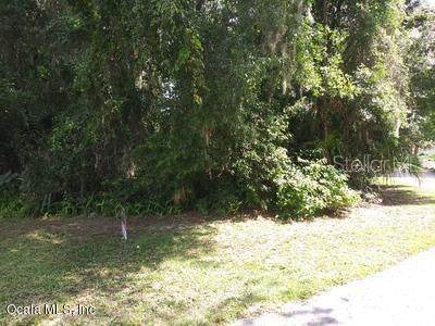 0 SE 106 Street, Belleview, FL 34420 (MLS #OM560049) :: The A Team of Charles Rutenberg Realty