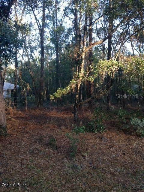 000 SW 188 Circle, Dunnellon, FL 34432 (MLS #OM561253) :: Better Homes & Gardens Real Estate Thomas Group