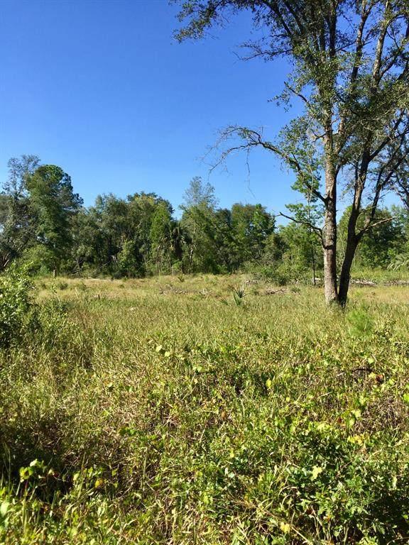 0 132 Court, Fort Mccoy, FL 32134 (MLS #OM563582) :: Bustamante Real Estate