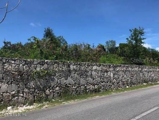 0 Leopoldina Vda Martinez, Punta Cana, OC 00000 (MLS #OM566323) :: The Duncan Duo Team