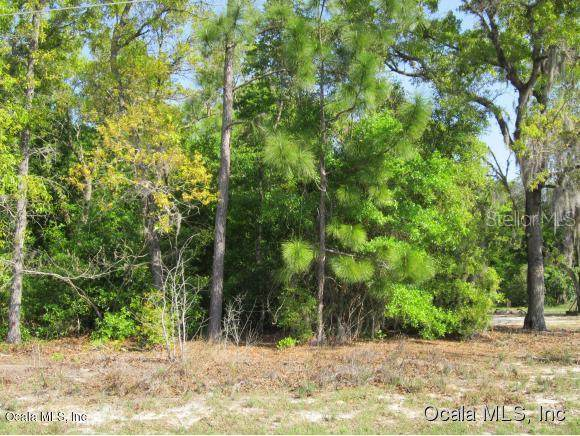 TBD SE 162nd Place, Summerfield, FL 34491 (MLS #OM567184) :: Young Real Estate