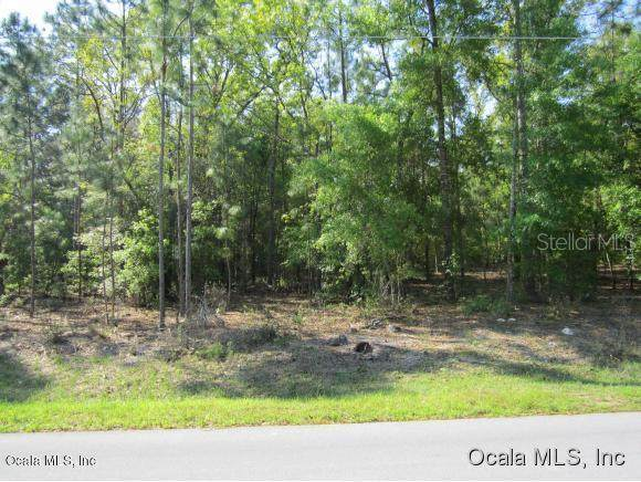 TBD SE 160th Place, Summerfield, FL 34491 (MLS #OM567190) :: Young Real Estate