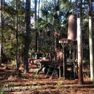 2951 SW Wildhog Trail, Chiefland, FL 32626 (MLS #OM568888) :: The Duncan Duo Team