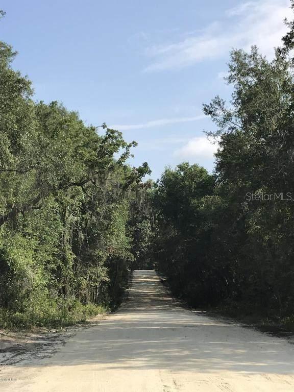 6486 N Canopy Terrace, Hernando, FL 34442 (MLS #OM600126) :: Homepride Realty Services