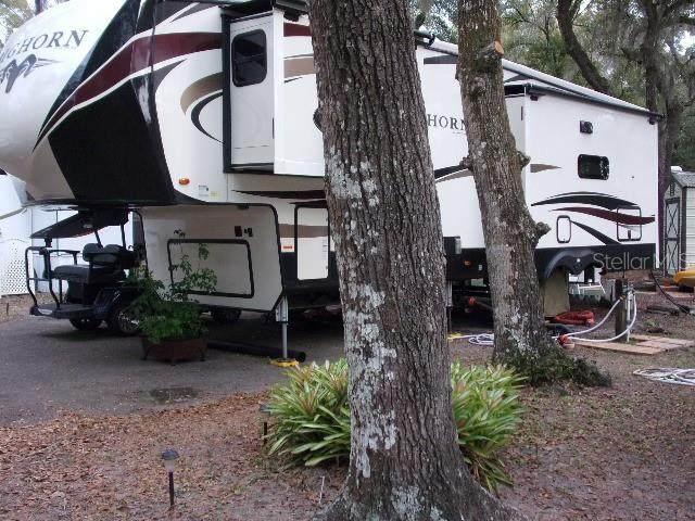 25152 NE 142 Lane, Salt Springs, FL 32134 (MLS #OM600441) :: The Light Team