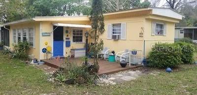 10438 SE 130 Place, Ocklawaha, FL 32179 (MLS #OM601451) :: Lockhart & Walseth Team, Realtors