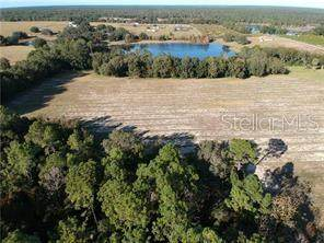 00 SE 156TH PLACE ROAD, Weirsdale, FL 32195 (MLS #OM601551) :: Young Real Estate