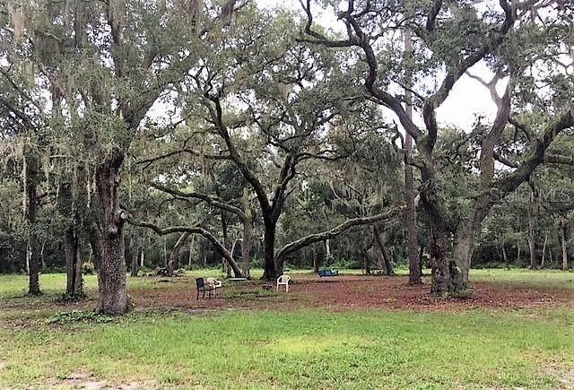 00 SE 130TH Place, Ocklawaha, FL 32179 (MLS #OM602013) :: Heckler Realty