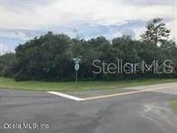 3121 SW 162 Loop, Ocala, FL 34473 (MLS #OM602074) :: The A Team of Charles Rutenberg Realty