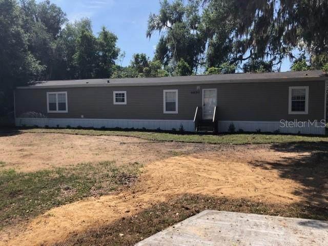 6650 SE 139TH Lane, Summerfield, FL 34491 (MLS #OM602078) :: Homepride Realty Services