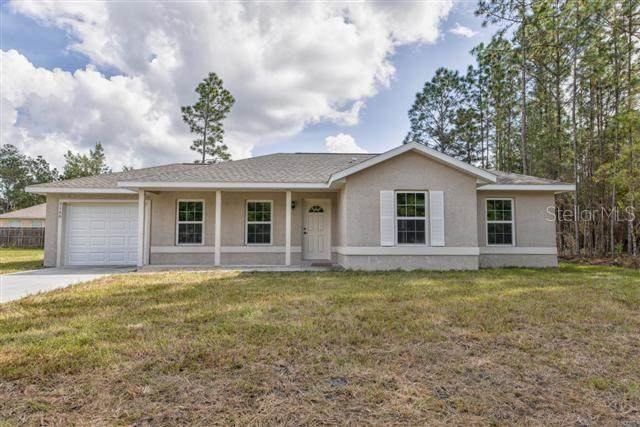 6 Fisher Loop Course, Ocklawaha, FL 32179 (MLS #OM602484) :: Zarghami Group