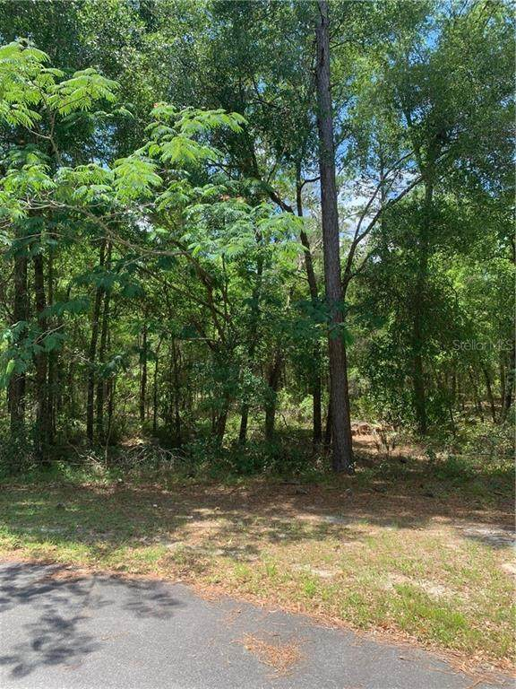 LOT 13 43 LANE Road - Photo 1
