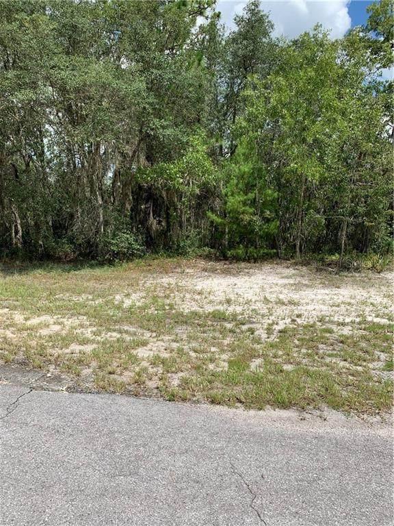 0 SW 49 TER RD, Ocala, FL 34473 (MLS #OM606119) :: Bustamante Real Estate