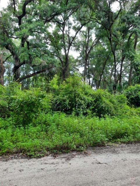 0 SE 147TH Lane, Summerfield, FL 34491 (MLS #OM606269) :: Bustamante Real Estate