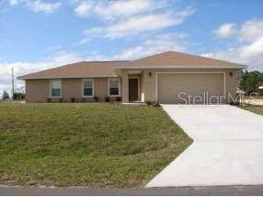 Address Not Published, Belleview, FL 34420 (MLS #OM606923) :: Bustamante Real Estate
