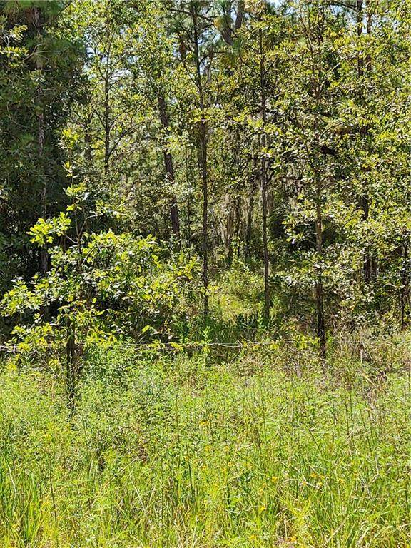 7276 N Nicosia Point, Dunnellon, FL 34433 (MLS #OM607082) :: The Robertson Real Estate Group