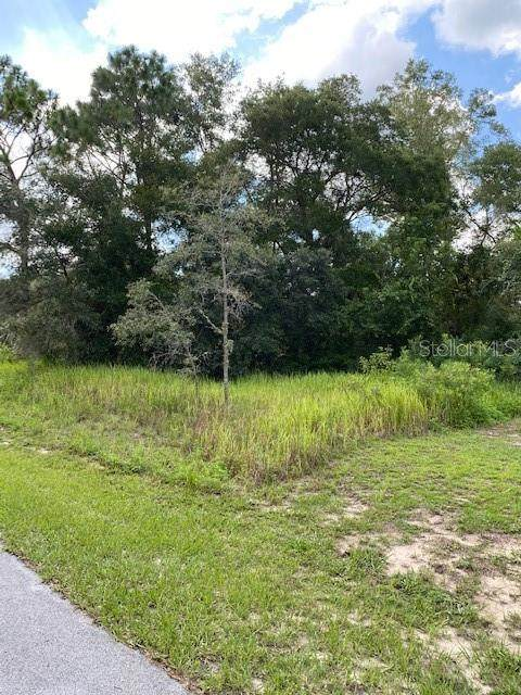 Tbd Sw 189Th Circle, Dunnellon, FL 34432 (MLS #OM607178) :: Rabell Realty Group