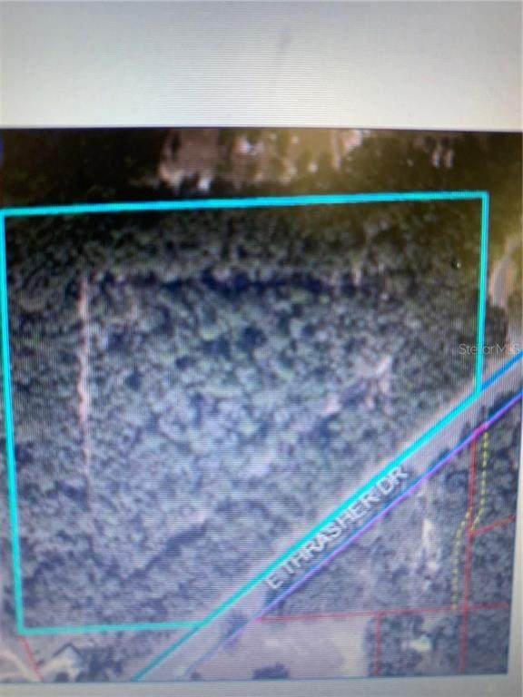 TBD Hwy 24 (Archer Road ), Bronson, FL 32621 (MLS #OM607238) :: Griffin Group