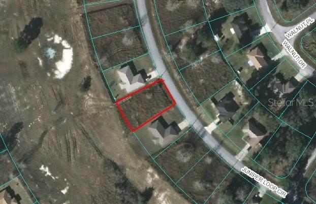 00 Juniper Loop Cir, Ocala, FL 34472 (MLS #OM607322) :: Prestige Home Realty