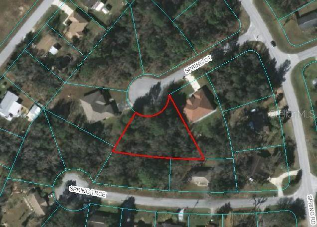 TBD Spring Court, Ocala, FL 34472 (MLS #OM607640) :: Bustamante Real Estate