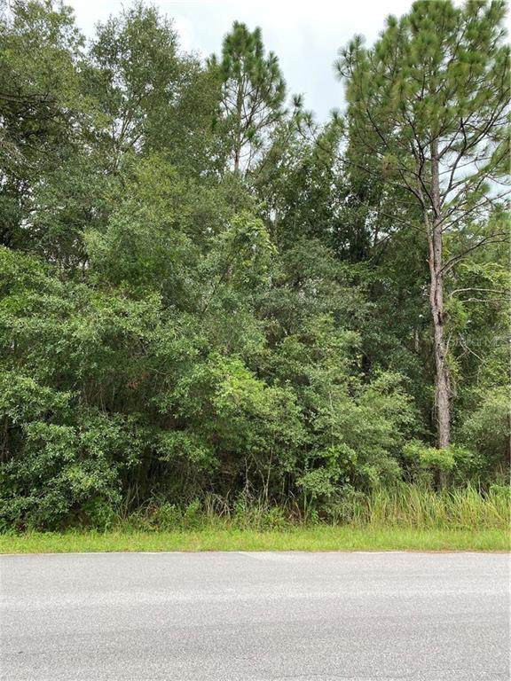 Tbd Sw 189Th Circle, Dunnellon, FL 34432 (MLS #OM607833) :: Premier Home Experts