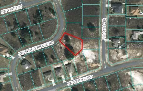 00 SW 64TH TERRACE RD, Ocala, FL 34473 (MLS #OM607907) :: Rabell Realty Group