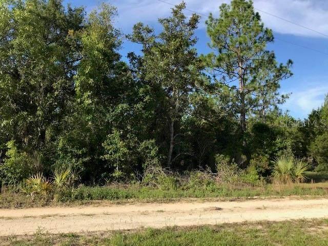 0 NE 52ND Street, Williston, FL 32696 (MLS #OM608004) :: Bustamante Real Estate