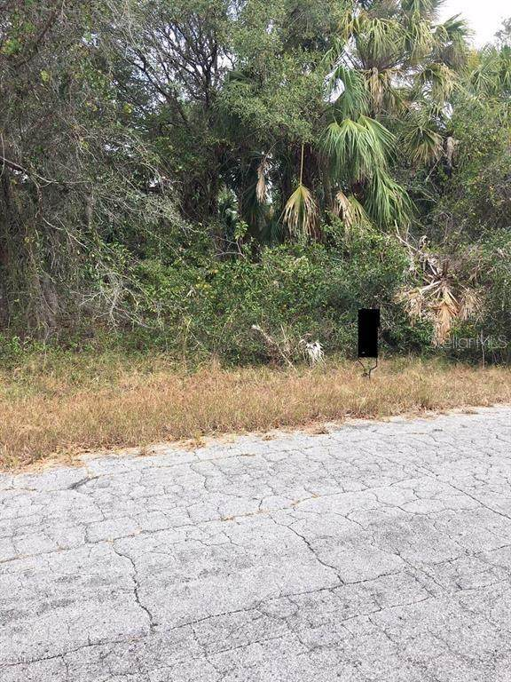 0 Nymph Avenue, North Port, FL 34288 (MLS #OM608028) :: KELLER WILLIAMS ELITE PARTNERS IV REALTY