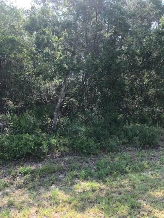 0 SW 154TH LANE Road, Ocala, FL 34473 (MLS #OM608091) :: Team Borham at Keller Williams Realty