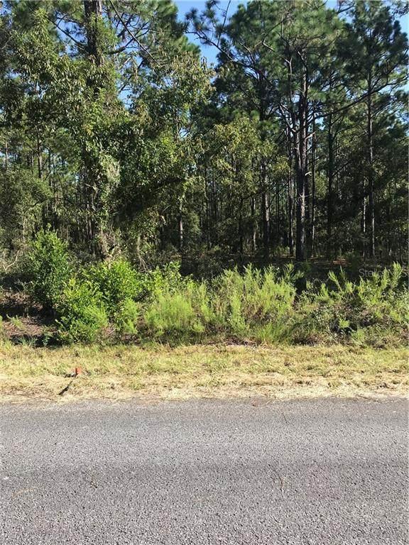 0 SW Rainelle Road, Dunnellon, FL 34431 (MLS #OM608174) :: Zarghami Group