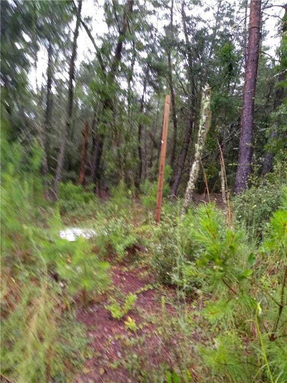 TBA SW 112 Lane, Ocala, FL 34476 (MLS #OM608220) :: Rabell Realty Group