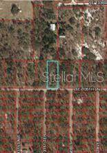 TBD SE 105TH Lane, Dunnellon, FL 34431 (MLS #OM608635) :: Rabell Realty Group