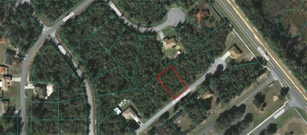 8 LOT PACKAGE Olive Circle - Photo 1