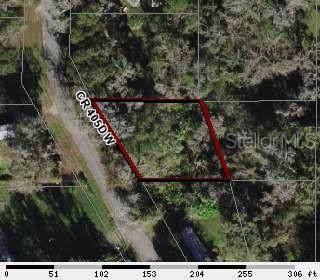 3603 Cr 405Dw, Lake Panasoffkee, FL 33538 (MLS #OM610256) :: BuySellLiveFlorida.com
