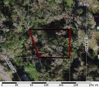 Cr 405D, Lake Panasoffkee, FL 33538 (MLS #OM610295) :: Premium Properties Real Estate Services