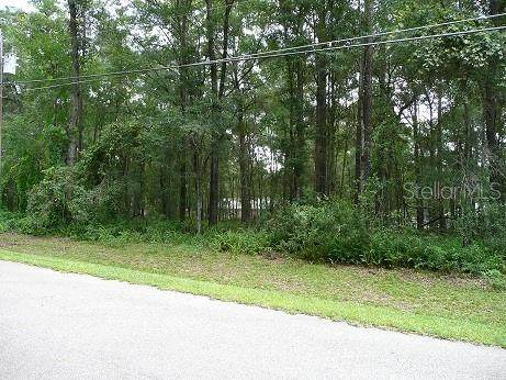 NW 61ST Court, Ocala, FL 34482 (MLS #OM610388) :: Young Real Estate