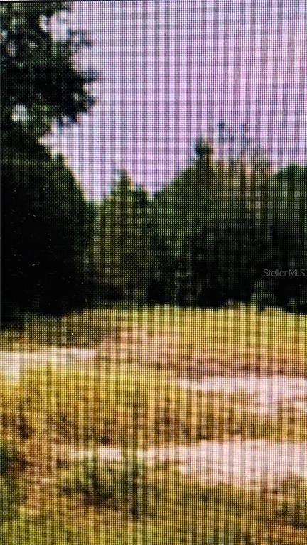 11790 SE Highway 464, Ocklawaha, FL 32179 (MLS #OM610437) :: Delta Realty, Int'l.