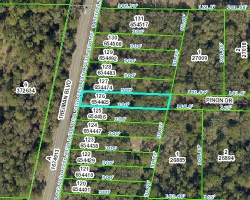 00 Treiman Boulevard, Webster, FL 33597 (MLS #OM610679) :: Baird Realty Group