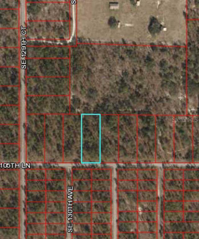 Dunnellon, FL 34431 :: Burwell Real Estate