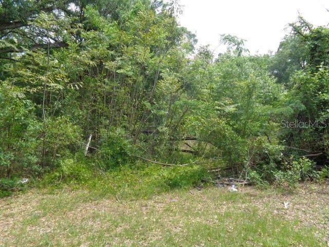 4403 NE 78TH Place, Wildwood, FL 34785 (MLS #OM612431) :: RE/MAX Premier Properties