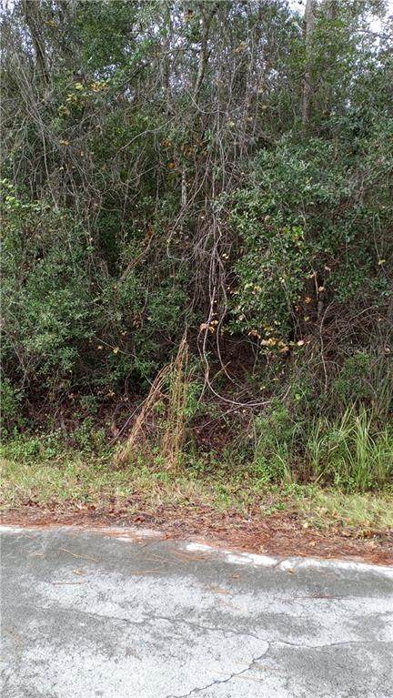 00 Locust Run Drive, Ocala, FL 34472 (MLS #OM612987) :: Griffin Group