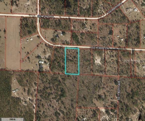0 Sw 73 Lane, Morriston, FL 32668 (MLS #OM613541) :: Griffin Group