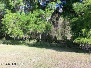 0 SW 177 PLACE RD, Ocala, FL 34473 (MLS #OM613546) :: Griffin Group