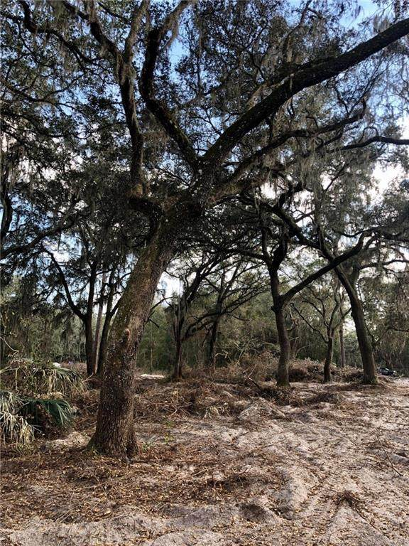 0 NE 125ND Lane, Anthony, FL 32617 (MLS #OM613716) :: Everlane Realty